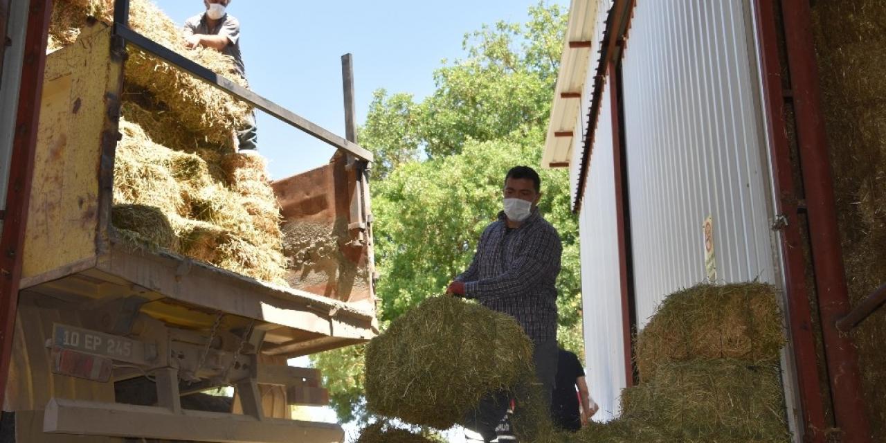 Balıkesir Büyükşehir'den üreticilere yem desteği