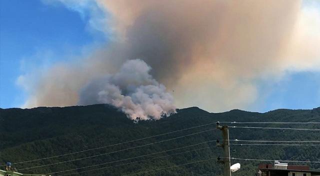 Aydın'daki orman yangını büyüyor!