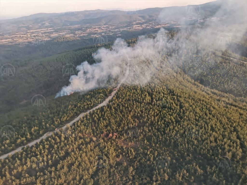 Çanakkale'de orman yangınında 2 dönüm alan zarar gördü!