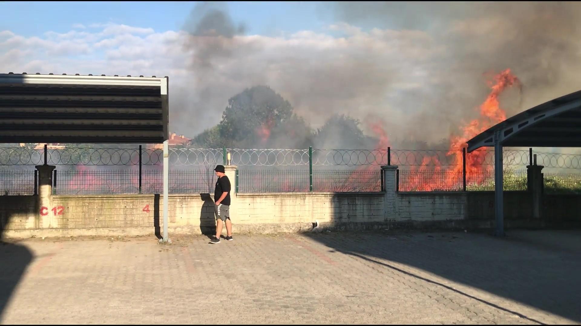 Düzce'de fındıklık alev alev yandı