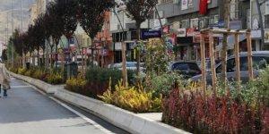 Çankırı'da Atatürk Bulvarı'na bitkisel bakım