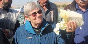 """Canan Karatay: """"Lahana turşusu, dünyanın en önemli tıbbi malzemelerinden biri"""""""