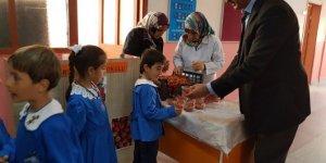 İlkokul öğrencilerine organik çilek