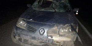 Bingöl'de başıboş atlar kazaya neden oldu: 4 yaralı