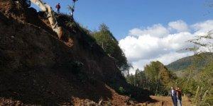 Bal ormanında arıcılara hizmet