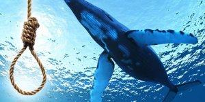 'Mavi Balina' Bir Gencin Daha Hayatını Söndürdü