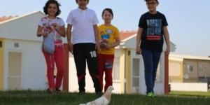 Çocuklar Odunpazarı'nda hayvan dostlarıyla buluştu