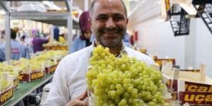 Alaşehir'de Üzüm Festivali başlıyor