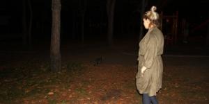 Kaybolan Fındık isimli köpeğini bulana 500 lira ödül verecek