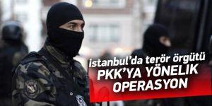 İstanbul'da terör örgütüne baskın