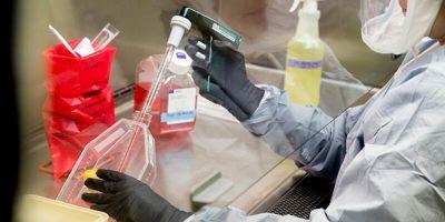1250 TL'ye koronavirüs testi yaptırmak istiyor musunuz?