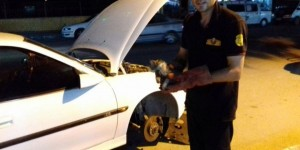 Otomobilin motor bölümüne sıkışan kedi, 2 saatte kurtarıldı