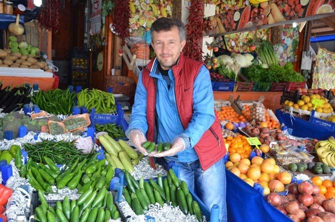 Fiyatı 7 liraya kadar yükselen salatalık el yakıyor