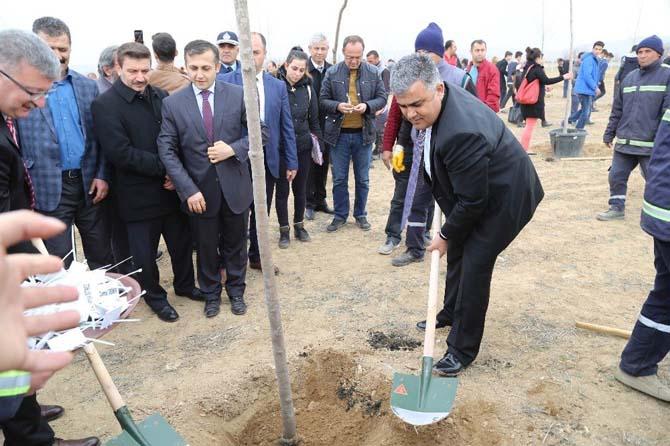 Ereğli'de 15 Temmuz Şehitleri için Hatıra Ormanı oluşturuldu