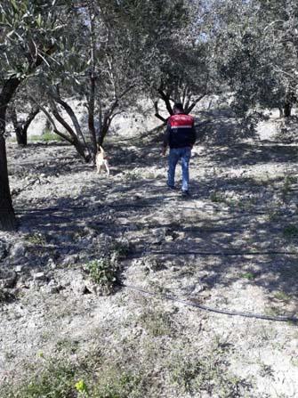 Mut'ta kaybolan yaşlı adam bulundu