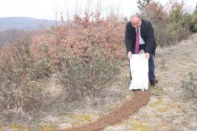 Başkan Babaş, yaban hayvanları için ormana yem bıraktı