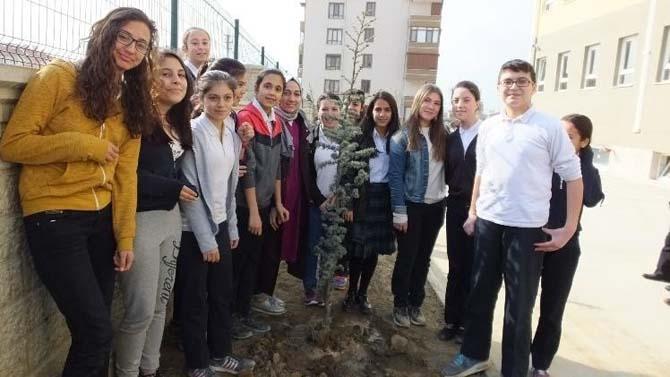 Burhaniyeli öğrencilerin dikili ağacı oldu