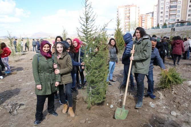 Tınaztepe Mahallesi yeşile bürünüyor