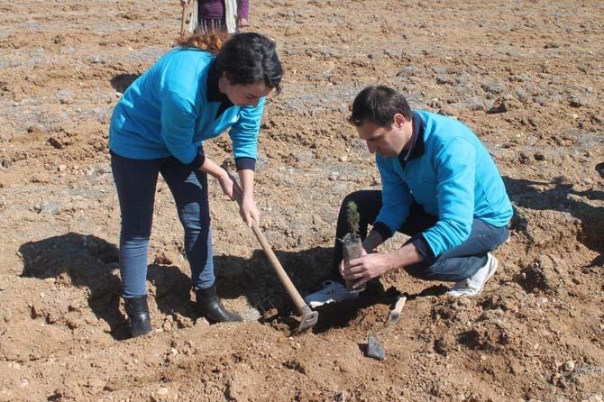 MEDAŞ personelinden ağaçlandırmaya destek