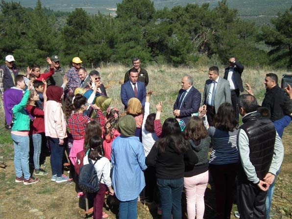 Havran'da öğrenciler baden ağacı dikti