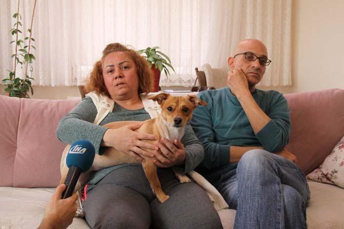 Evde beslenilen köpek komşuları birbirine düşürdü