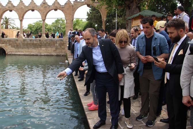 Bakan Kılıç, Balıklıgöl'ü ziyaret ederek balıklara yem attı