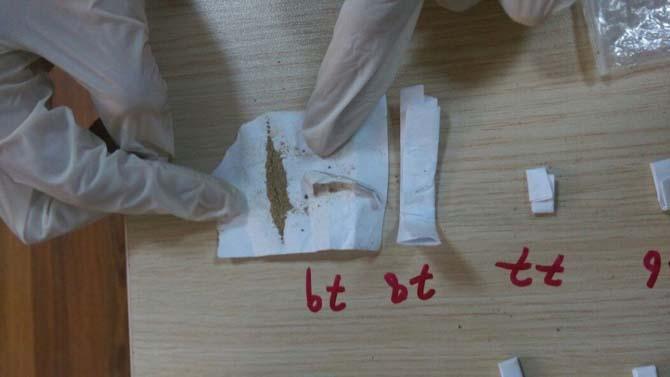 Bitlis'te eş zamanlı uyuşturucu operasyonu