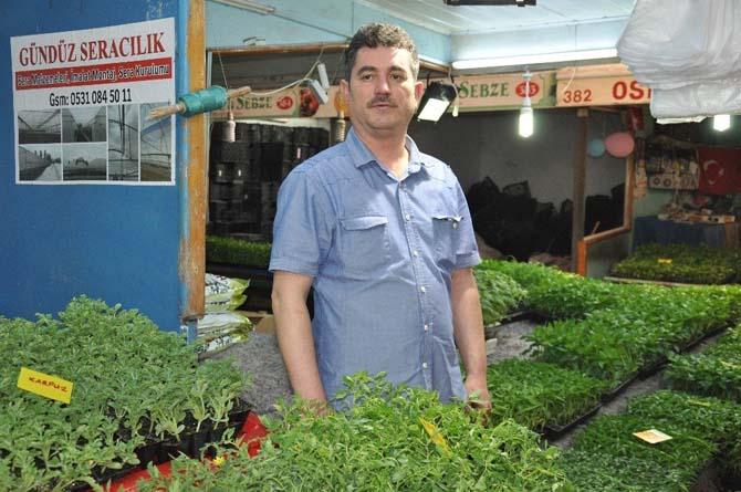 Eskişehir'de sebze ve meyve fideleri tezgahlardaki yerlerini aldı
