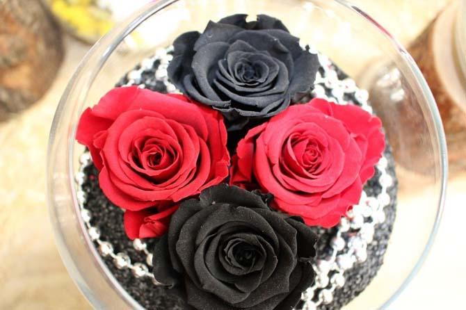 Bu güller solmuyor
