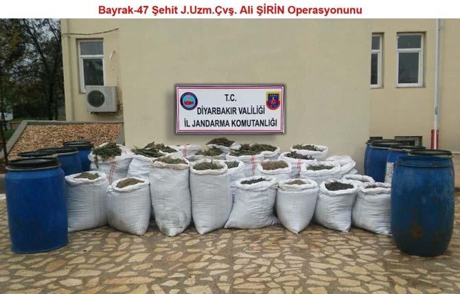 Diyarbakır'da zehir bataklığı kurutuluyor