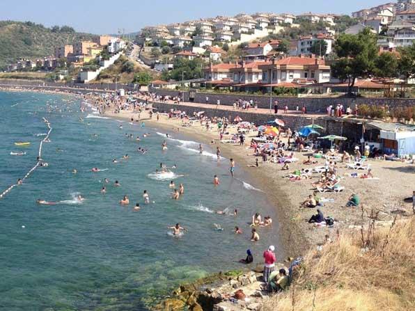 Bursa sahillerinden sevindirici haber