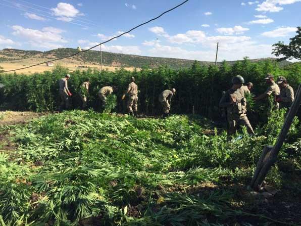Diyarbakır'daki 104 köyde operasyon tamamlandı