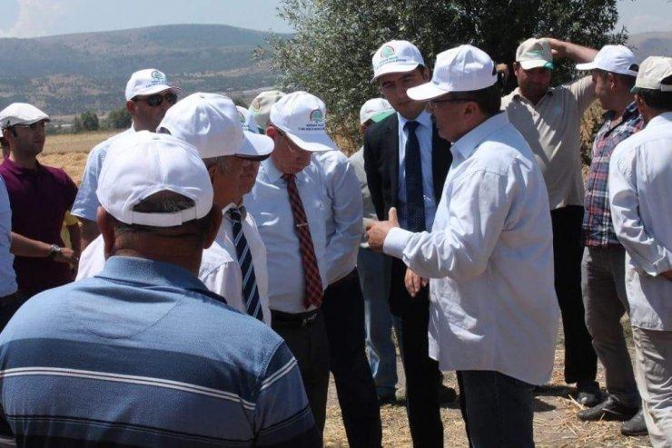 Vali Yardımcısı İnönü'de hasat bölgelerini gezdi