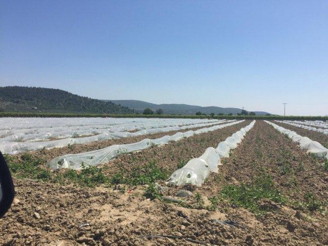 Tarımsal sulama tesisleri bakım onarımdan geçti