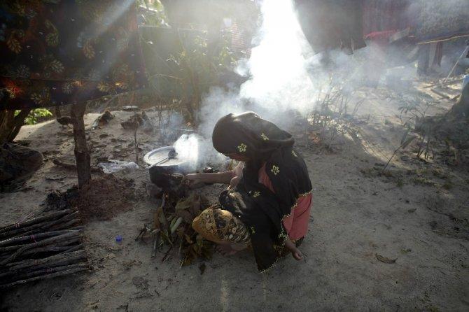 Vahşi filler, Ronhingya barınağına saldırdı: 2 ölü
