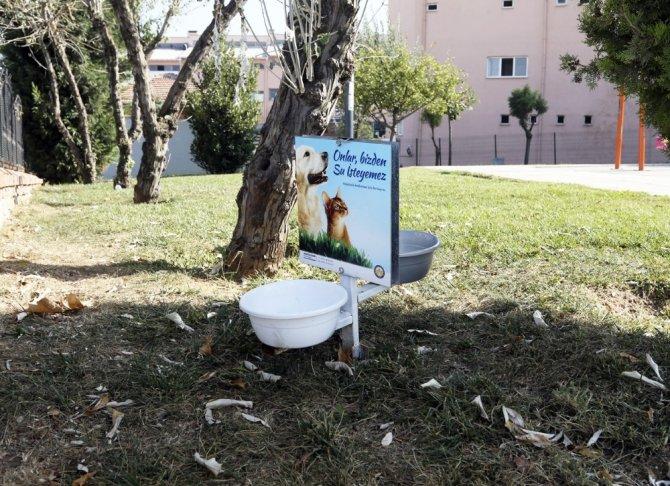 Sultanbeyli'de sokak hayvanları unutulmadı