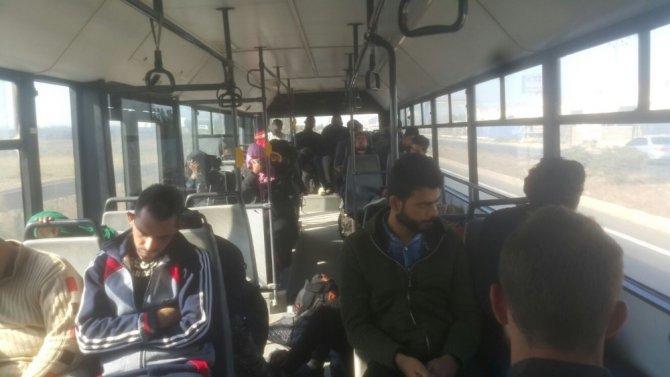 Aliağa'da 36 göçmen yakalandı