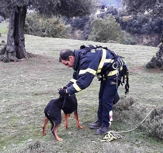 Uçurumda mahsur kalan köpeğin imdadına itfaiyeciler yetişti