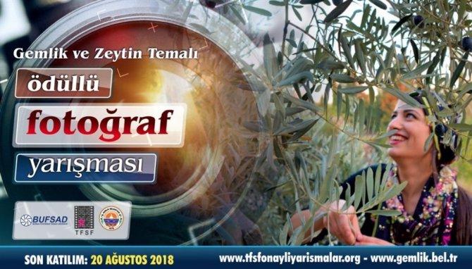 Zeytin başkenti Gemlik'te fotoğraf yarışması