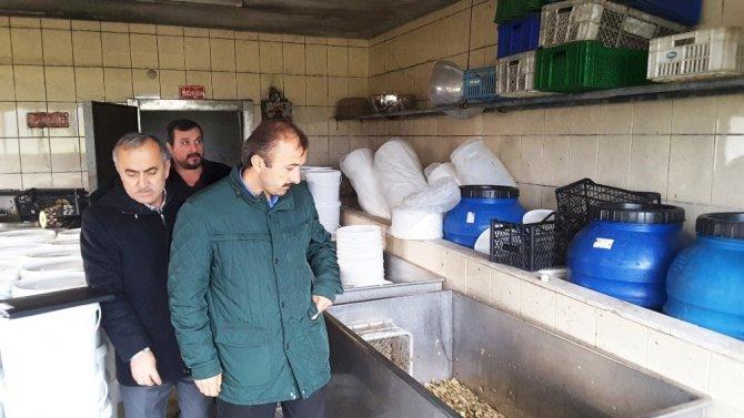 İzmit'te mantar paketleme tesisine mühürlendi