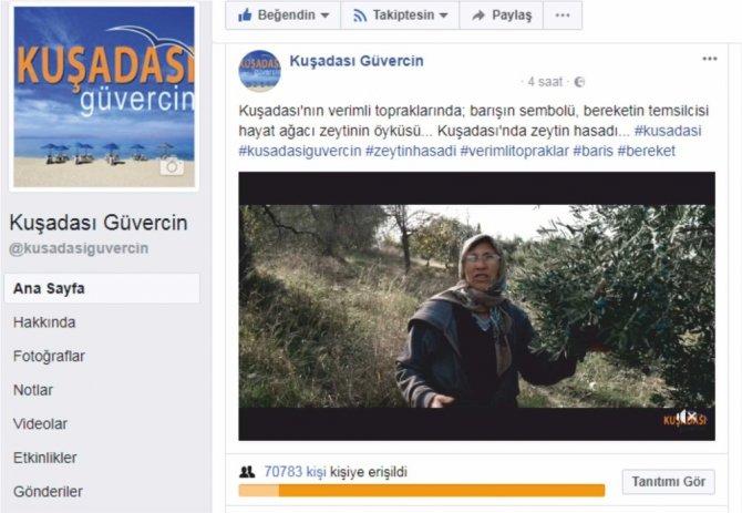 Kuşadası Ticaret Odası, Kuşadası'nda zeytin hasadı için tanıtım filmi yayınladı