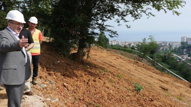 Unutulmaya yüz tutmuş meyve çeşitleri Trabzon Botanik'te yeşerecek