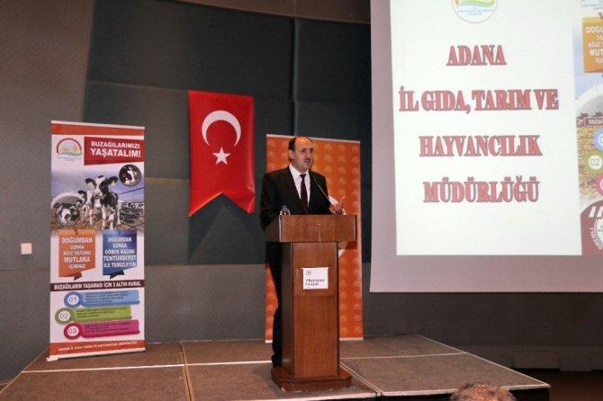 Adana'da buzağı ölümlerine karşı aşılama kampanyası