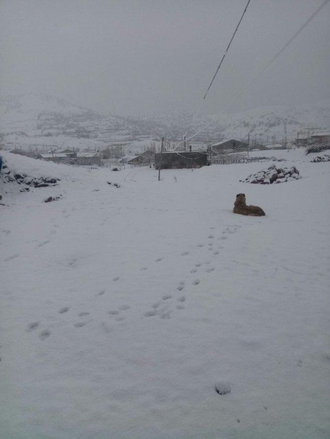 Adıyaman'da bazı köy okullarına kar tatili