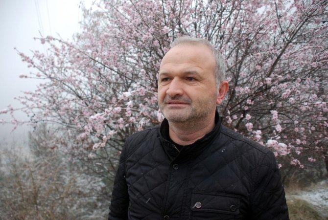 Tokat'ta çiçek açan meyve ağaçları kar altında kaldı