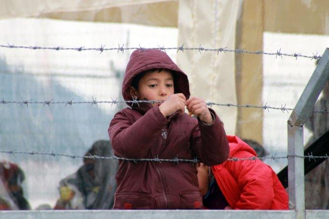 Dikili'de 154 kaçak göçmen yakalandı