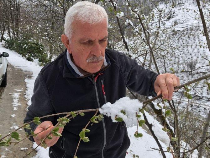 """Şahin: """"Her kar yağdığında fındıkta don olmaz"""""""