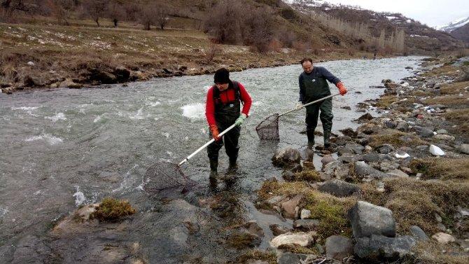 Aşırı avcılık deredeki balıkları bitiriyor