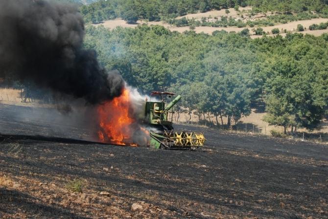 Bayramiç'te tarla yangını
