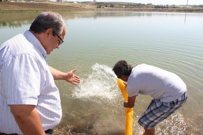 Göletlerde balıklandırma çalışmaları devam ediyor